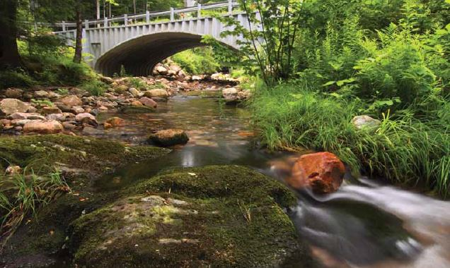 Rethinking Stream Crossings—Four Examples from New England